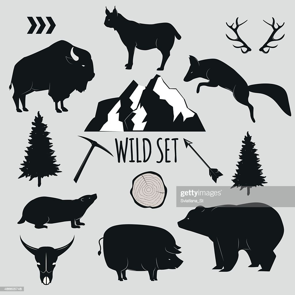 Wild animals and objects set