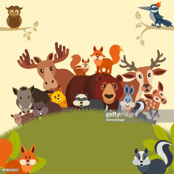 ilustraciones, imágenes clip art, dibujos animados e iconos de stock de tarjeta de felicitación de animales salvajes - grupo grande de animales