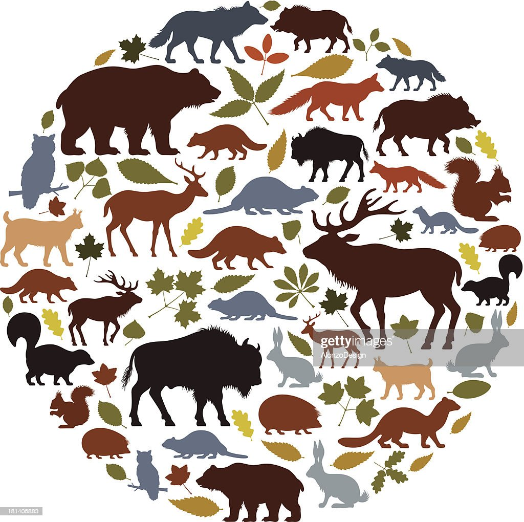 Wild Animals Icon Collage
