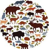Wild Animals Icon Collage