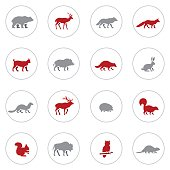 Wild Animals Icon Set