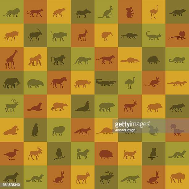 wild animals icon set - safari stock illustrations, clip art, cartoons, & icons