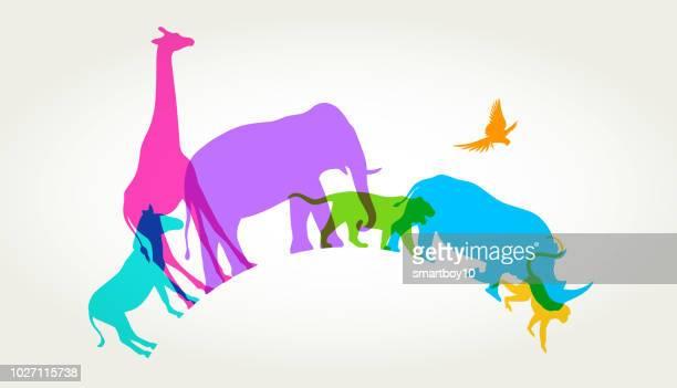 wild animals - endangered species stock illustrations