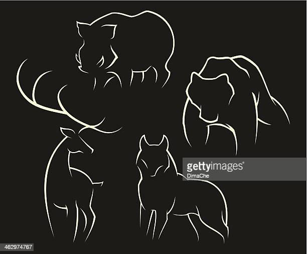 desenhos animados e ilustrações de stock de javali getty images