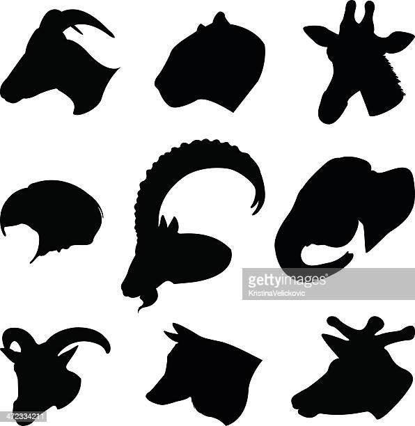 wild animals - ram animal stock illustrations, clip art, cartoons, & icons
