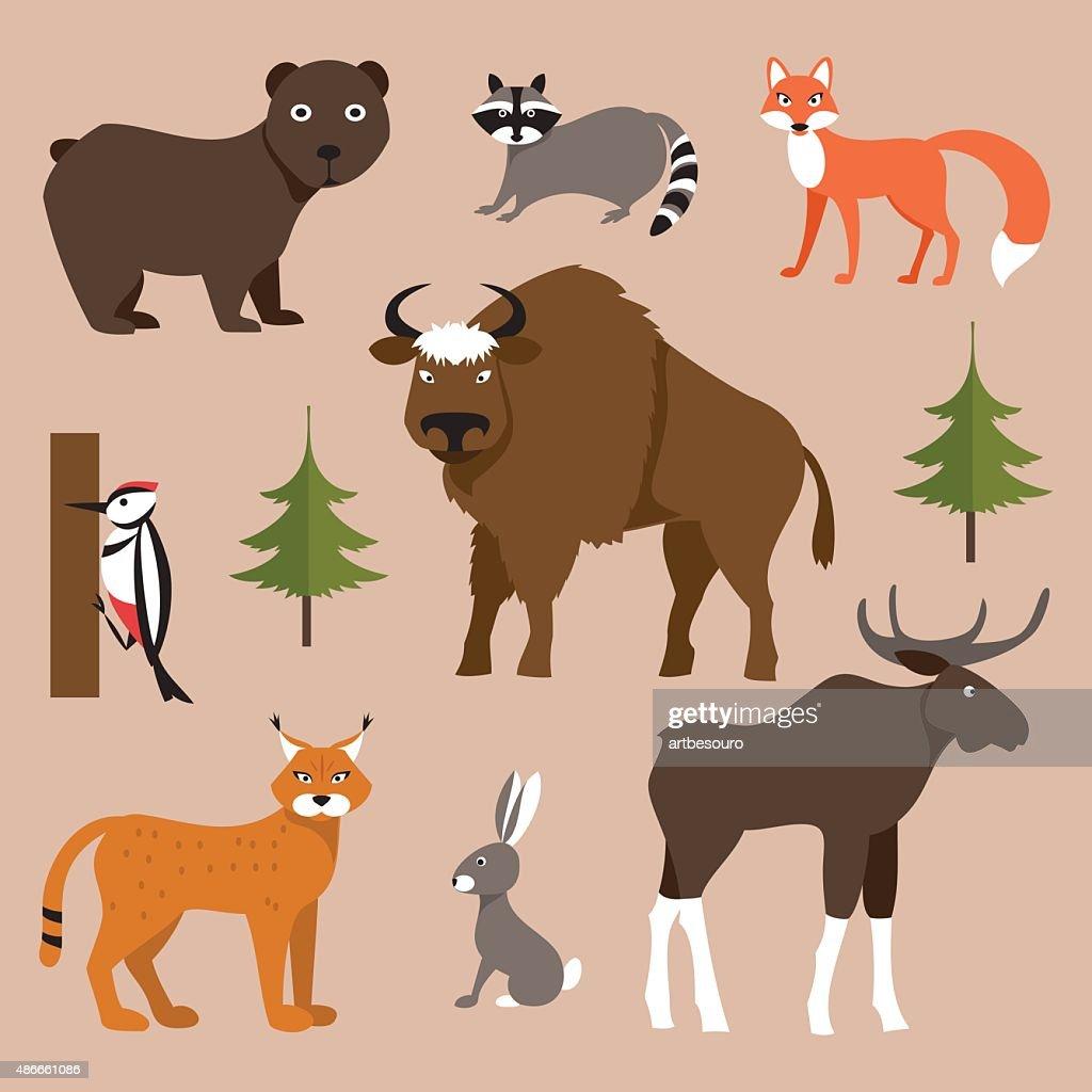 Wild animals. Vector Illustration