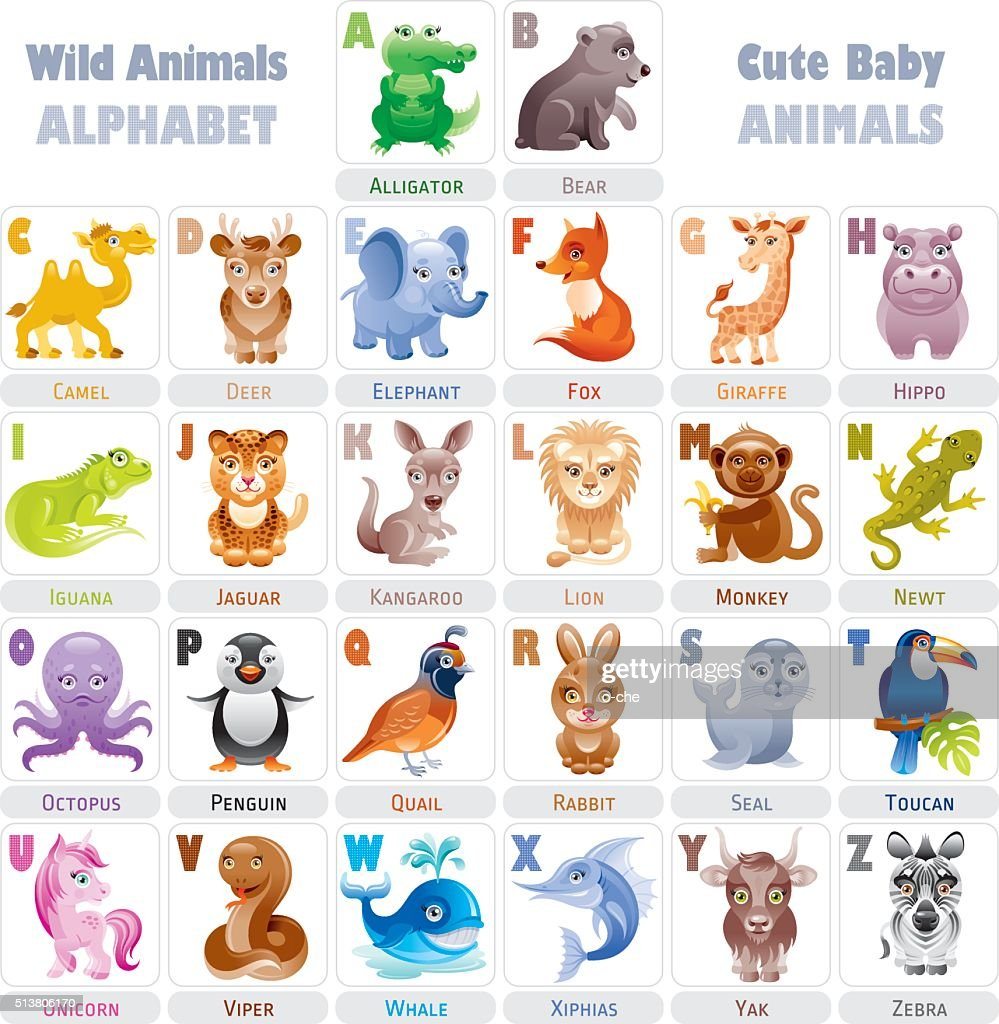 Wild baby animals alphabet