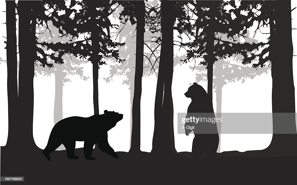 Wild Bears Vector Silhouette