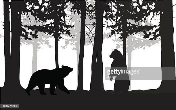 illustrations, cliparts, dessins animés et icônes de wildbears - ours