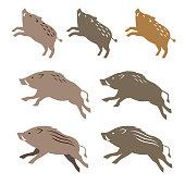 Wild boar, animal illustrations