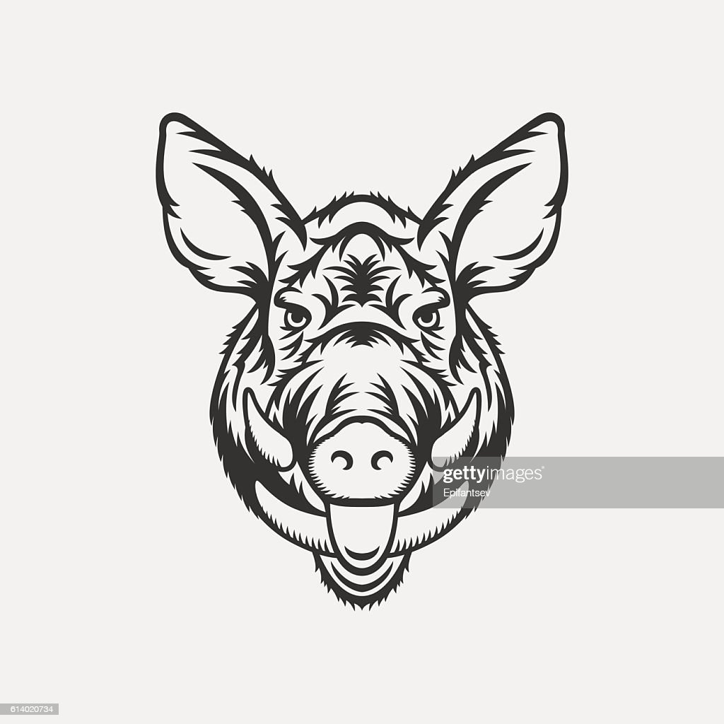 Wild boar head illustration