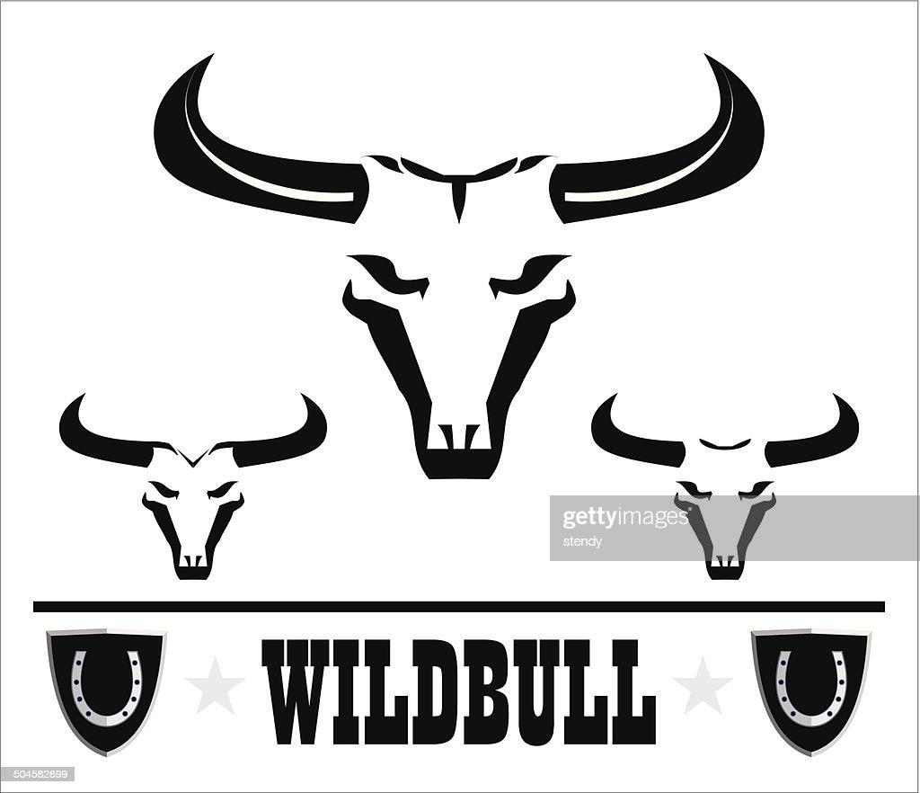 Wild bulls