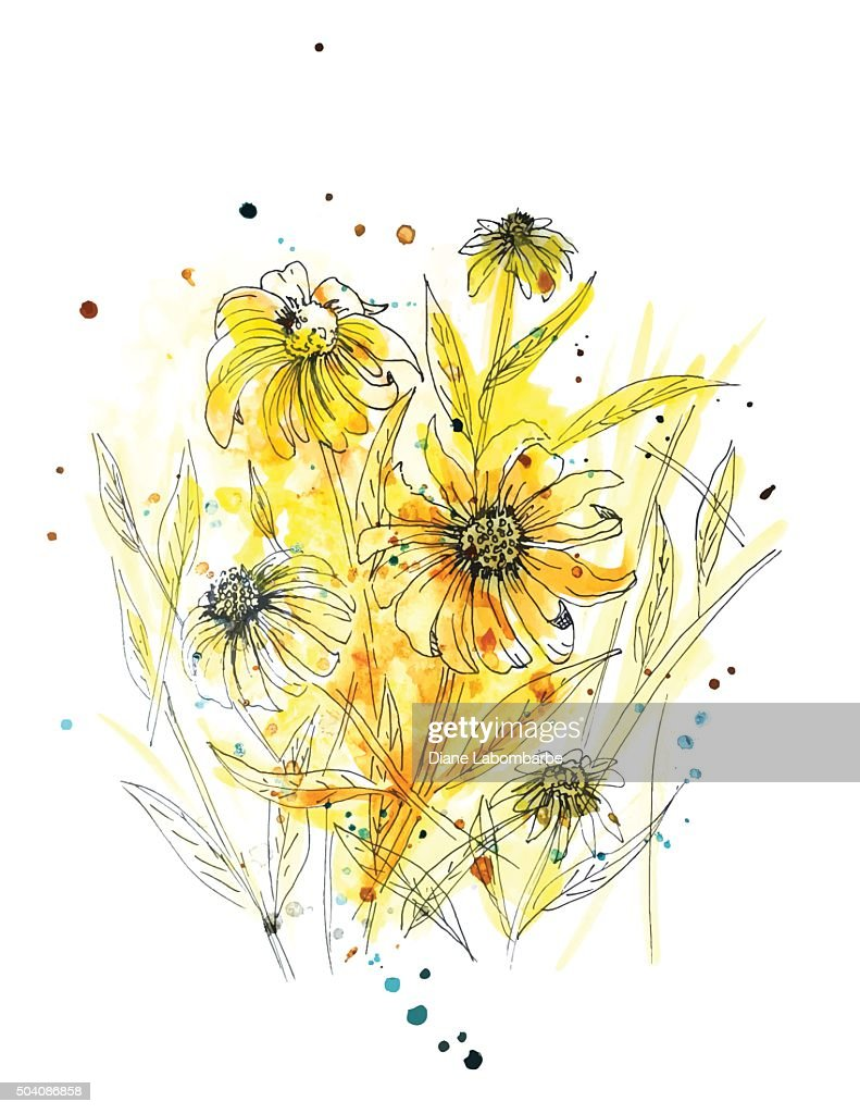 Wild Daisy Plant in Yellow Watercolor