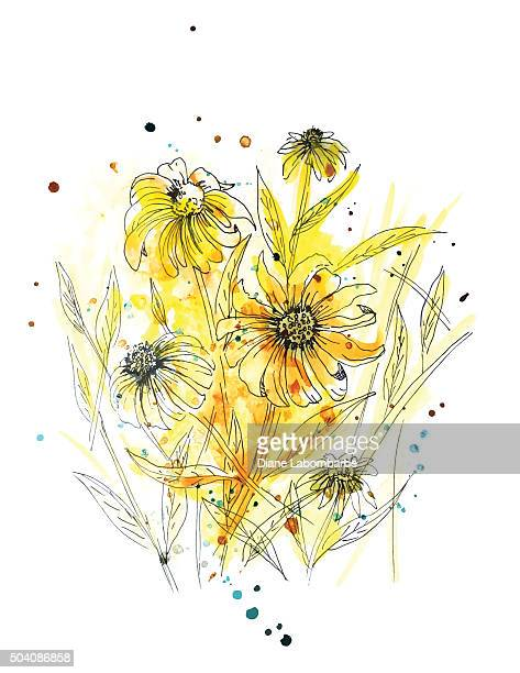 wild daisy plant in yellow watercolor - wildflower stock illustrations, clip art, cartoons, & icons