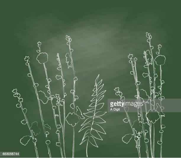 Wild Flower Chalk