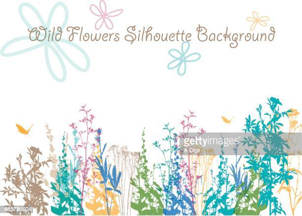 wild flower earth colored background - wildflower stock illustrations