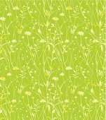Wild flowers green background.