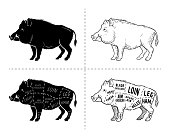 Wild hog, boar game meat cut diagram scheme - elements set on chalkboard