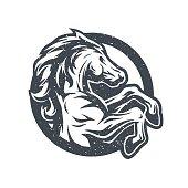 Wild horse, logo, symbol.