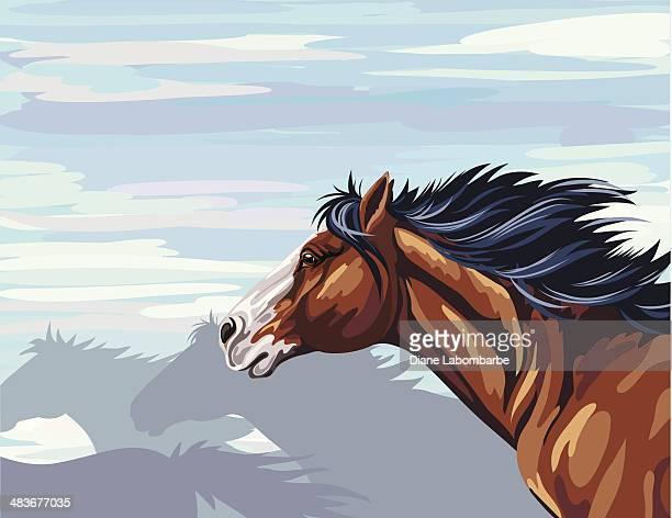 wild horse running - animal mane stock illustrations, clip art, cartoons, & icons