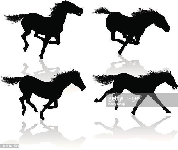wild horses - galloping or running - animal mane stock illustrations, clip art, cartoons, & icons