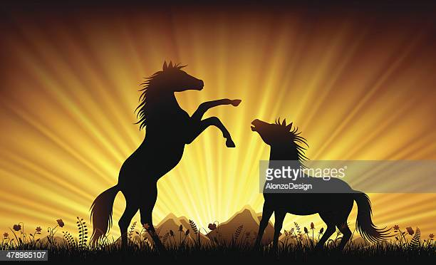 wild horses in sunset - mustang wild horse stock illustrations, clip art, cartoons, & icons