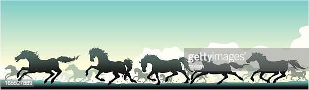 ilustraciones, imágenes clip art, dibujos animados e iconos de stock de caballos salvajes - caballo familia del caballo