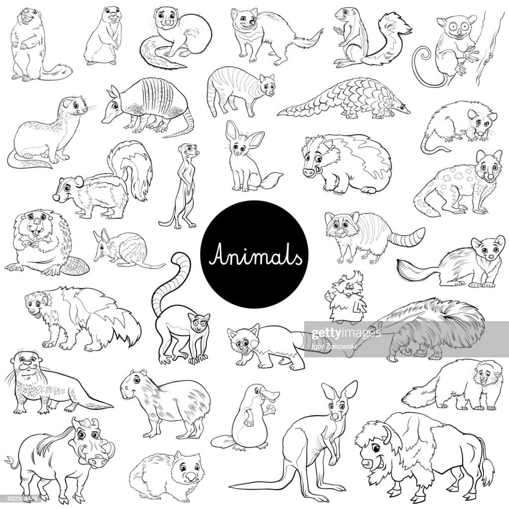 wild mammals animal characters set color book