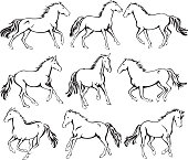 Wild Running Horses Line Art