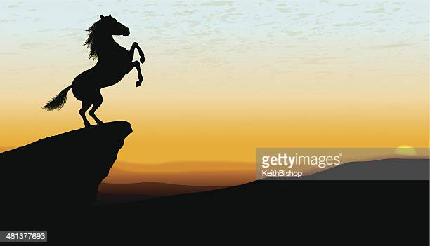 wild stallion at dawn or dusk background - mustang wild horse stock illustrations, clip art, cartoons, & icons