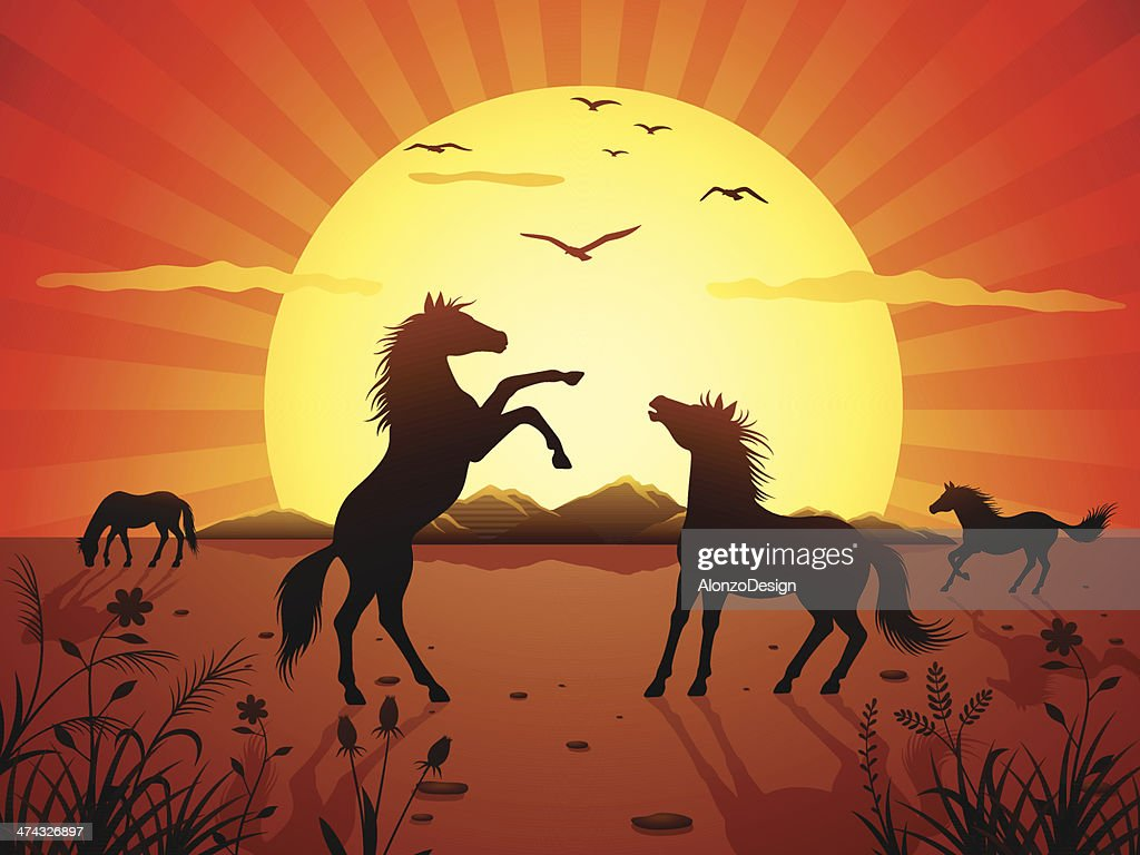 Wild Stallions Fight : stock illustration