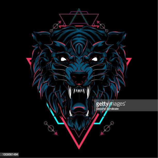 wild wolf sacred geometry - aggression stock illustrations