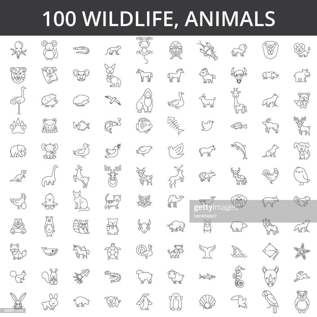 Wildlife african, sea, domestic, forest, zoo animals, cat, dog, wolf, fox, tiger, fish, bear, horse, dino, rhino, monkey line icons, signs. Illustration vector concept. Editable strokes