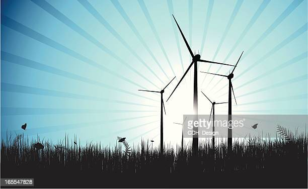Wind Farm Blue Shine