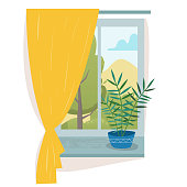 Window in room with curtain and house plant.