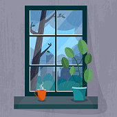 Window with a rainy city view. House plant and cup of tea or coffee on the windowsill.