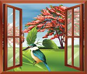 Window with a view of the bird