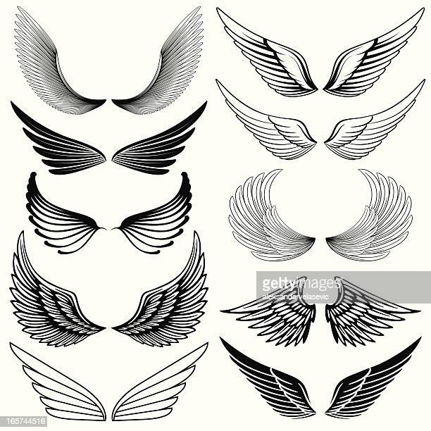 Wing Design Elements