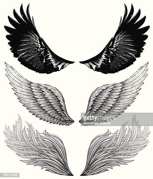 Wing Drawings