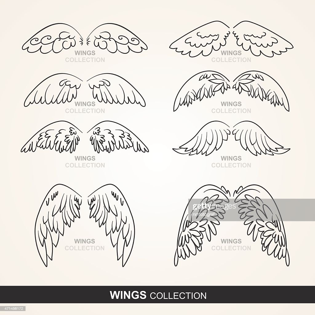 wings collection (set of wings