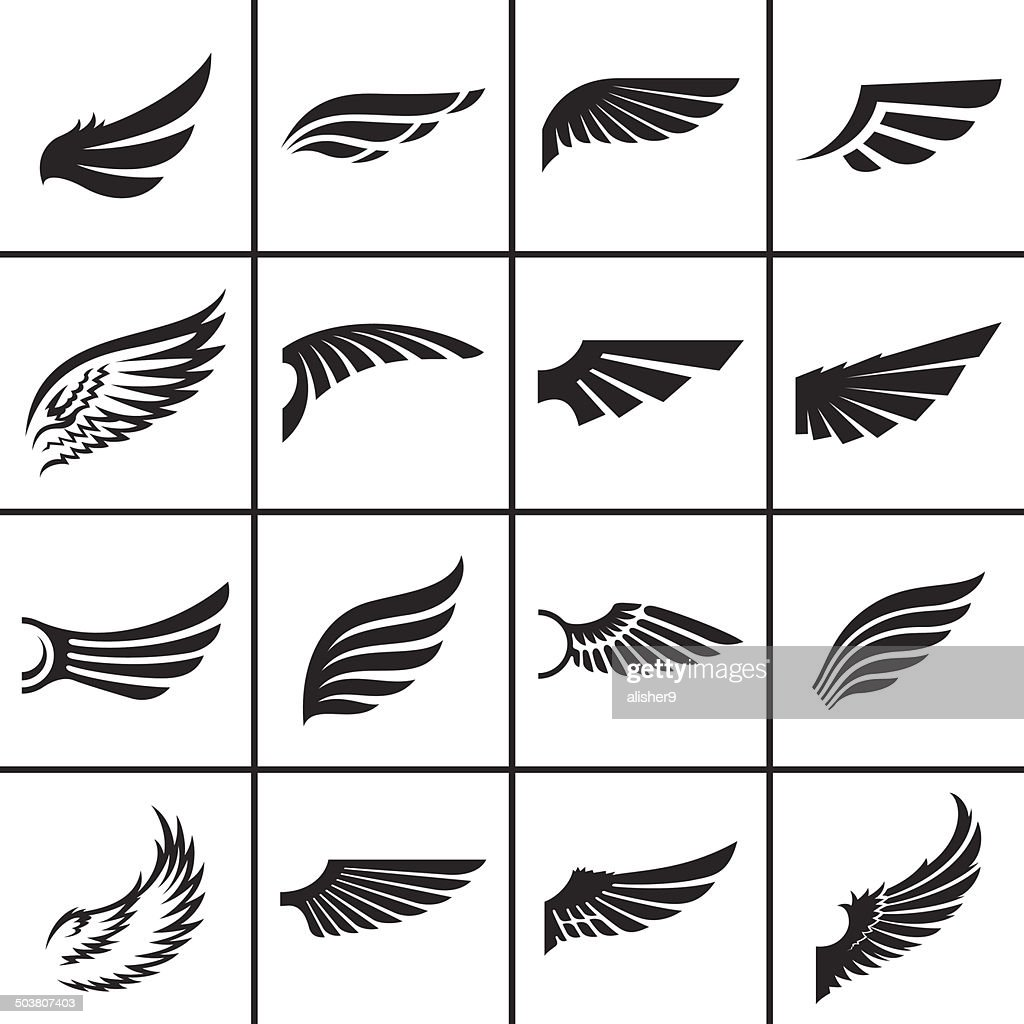 Wings design elements set
