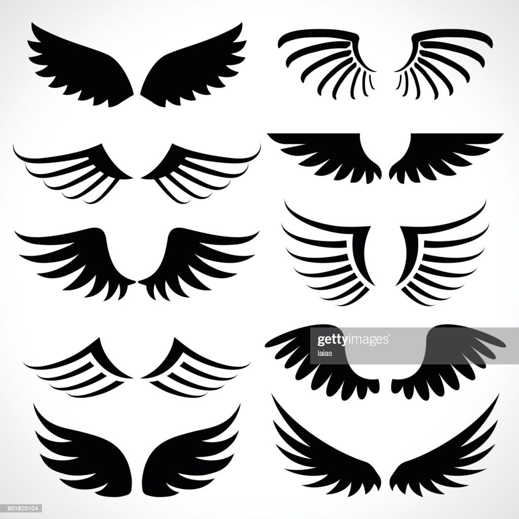 Wings icons set isolated on white background