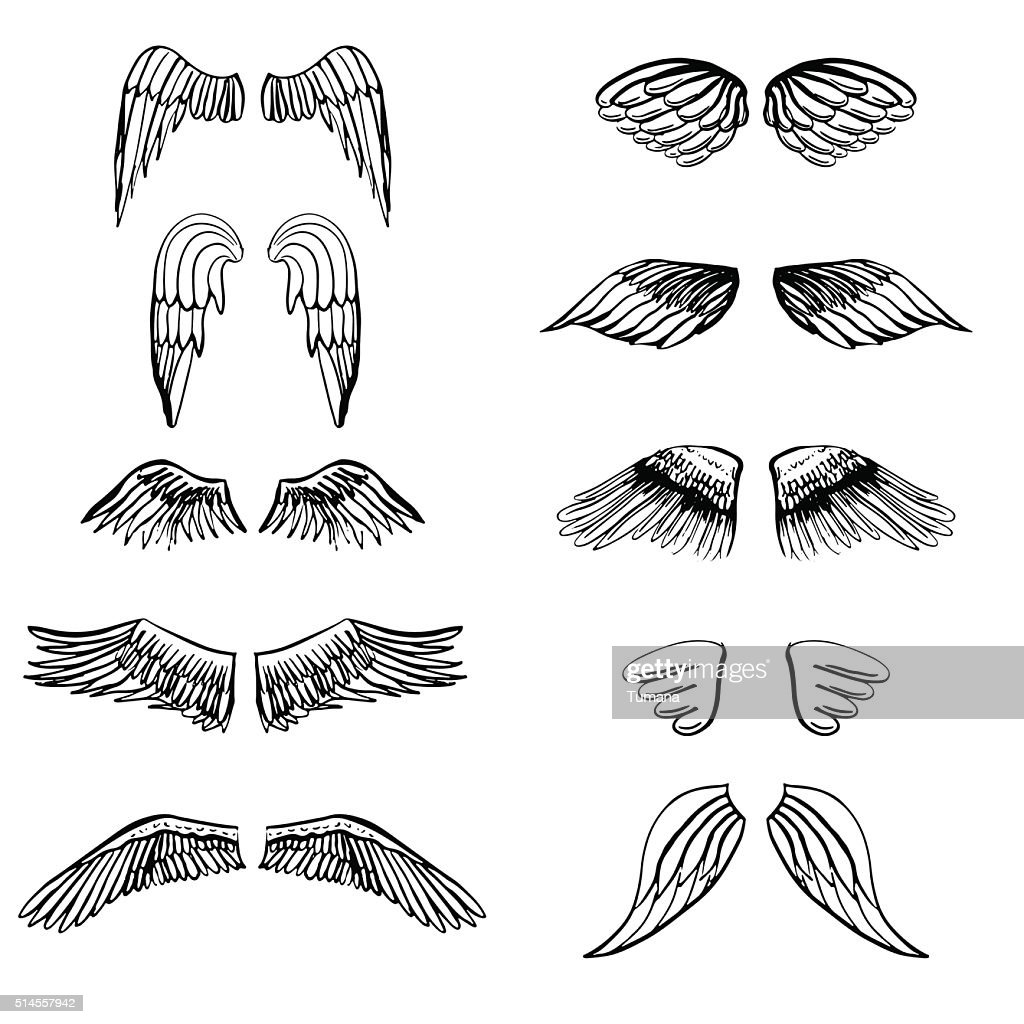 Wings illustration silhouettes set for making your own badge, label
