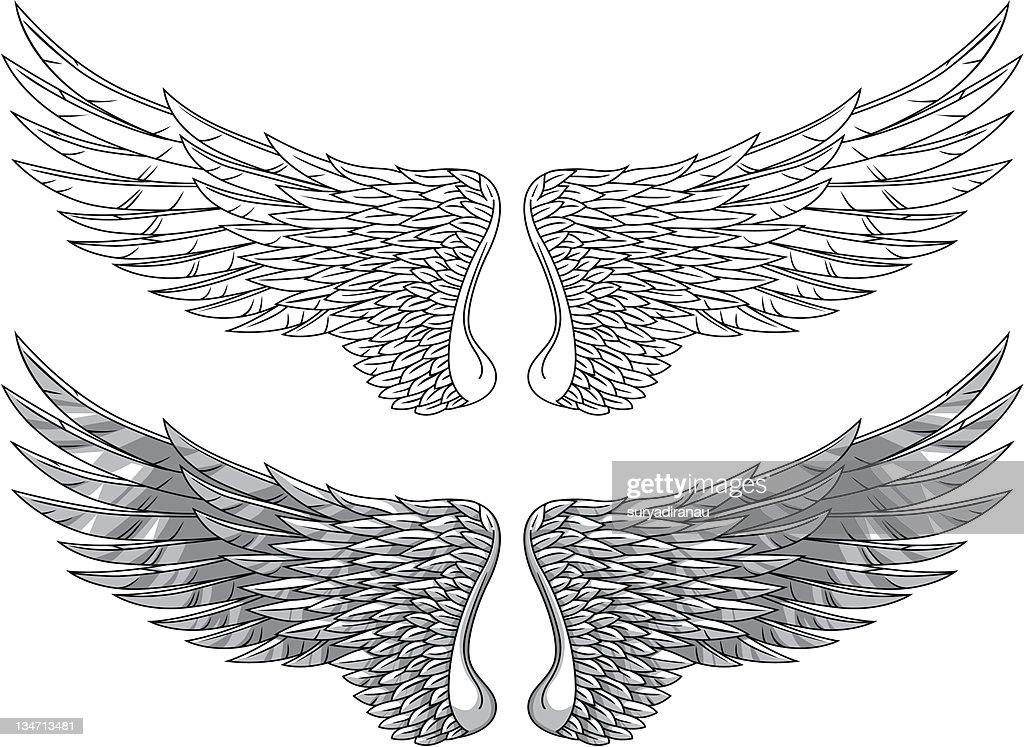 Wings illustration