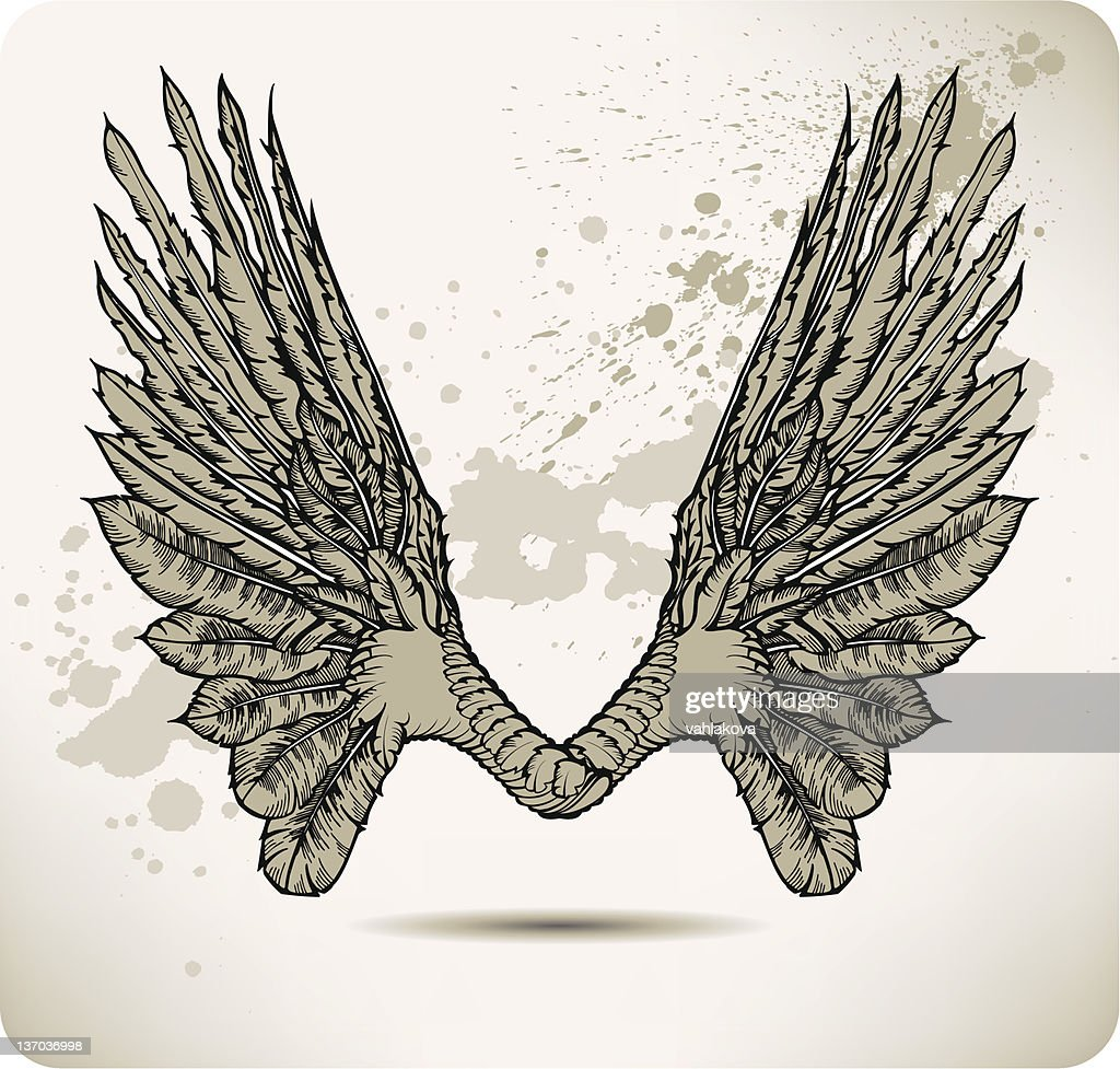 Wings of a crow. Vector illustration.