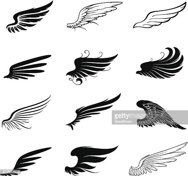 illustrations, cliparts, dessins animés et icônes de ensemble d'ailes - plume
