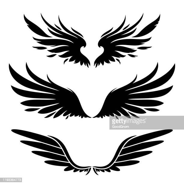 wings silhouette design elements - animal wing stock illustrations
