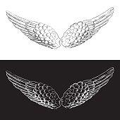 wings that kiss