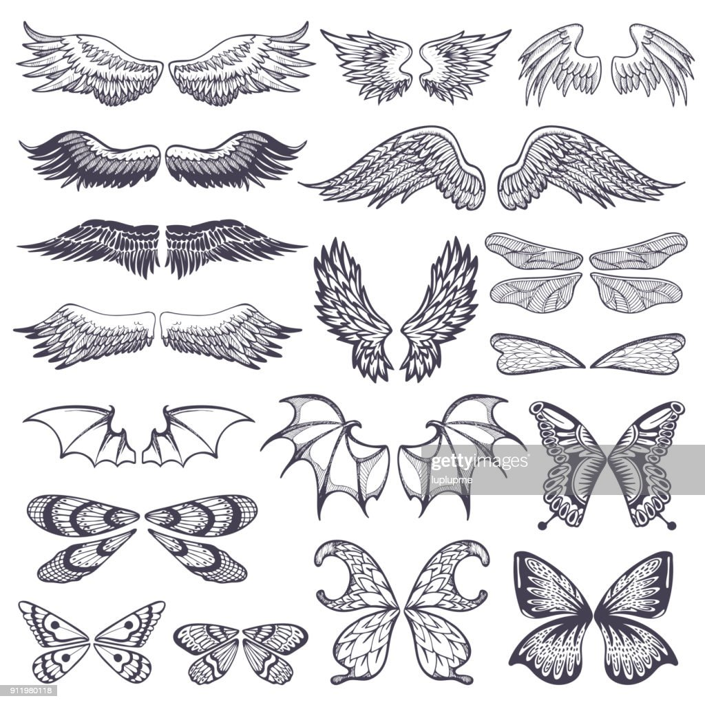 Wings vector flying winged angel with wing-case of bird and butterfly with wingspan illustration black wing-beat tattoo silhouette set isolated on white background