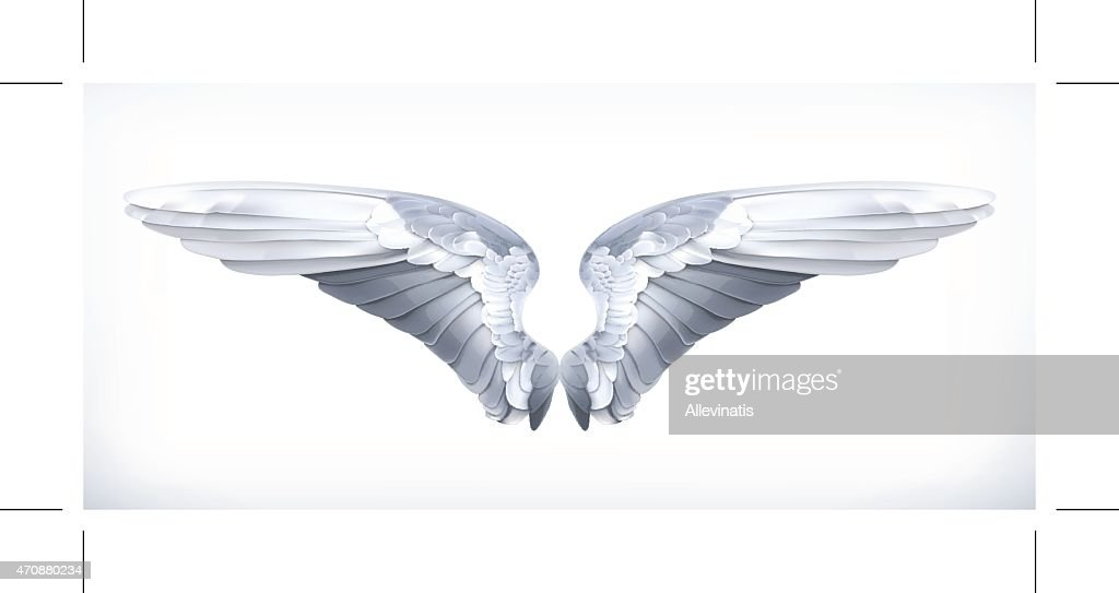 Wings, vector illustration